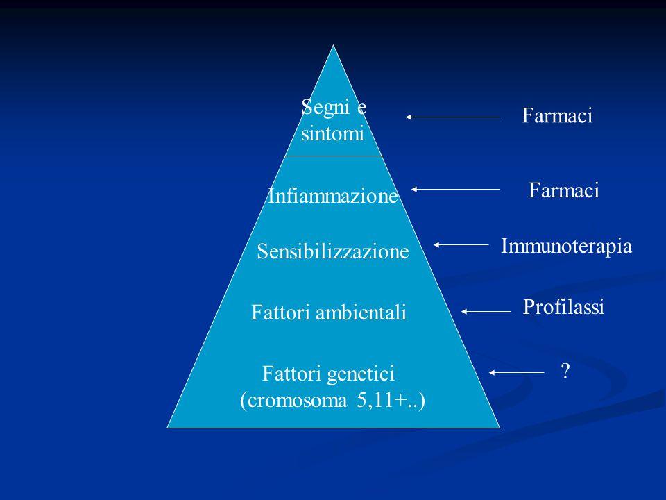 Segni e sintomi Infiammazione Sensibilizzazione Fattori ambientali Fattori genetici (cromosoma 5,11+..) Farmaci Immunoterapia Profilassi ?
