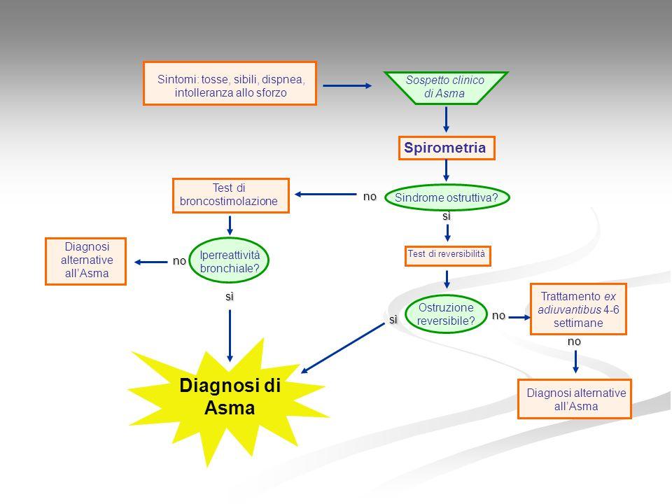  Adattare le linee Guida Internazionali alle esigenze socio- sanitarie italiane  Garantire che tutte le persone che si occupano di pazienti asmatici conoscano le raccomandazioni contenute nelle Linee Guida  Promuovere iniziative per aumentare le conoscenze nel campo della diagnosi e terapia dell'asma Obiettivi del Progetto Mondiale Asma Italia