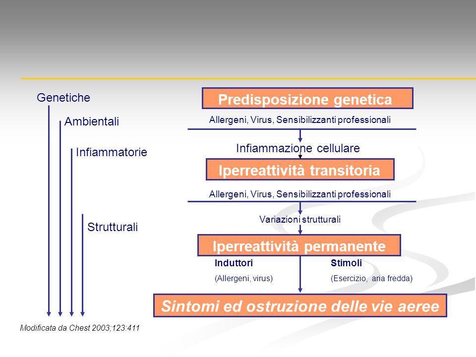 Sintomi ed ostruzione delle vie aeree Genetiche Ambientali Infiammatorie Strutturali Predisposizione genetica Allergeni, Virus, Sensibilizzanti profes