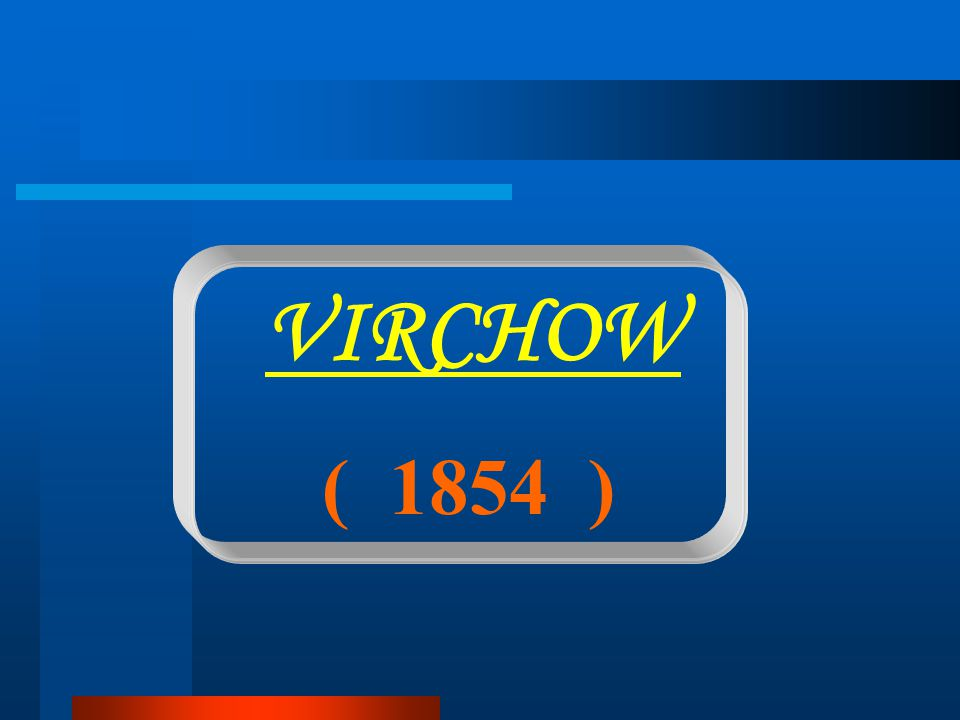 ( 1854 ) VIRCHOW