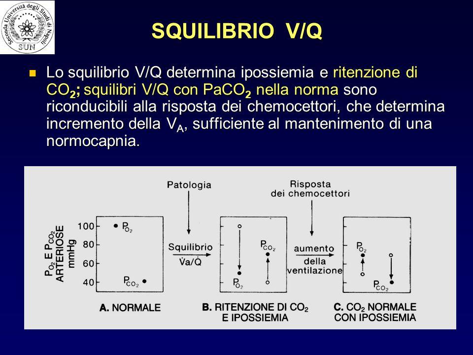 SQUILIBRIO V/Q Lo squilibrio V/Q determina ipossiemia e ritenzione di CO 2 ; squilibri V/Q con PaCO 2 nella norma sono riconducibili alla risposta dei