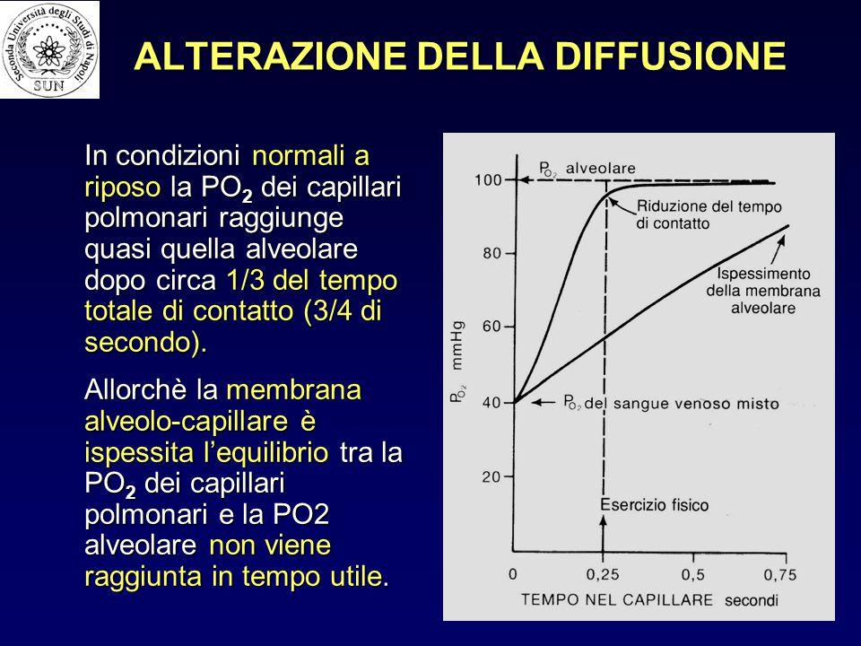 ALTERAZIONE DELLA DIFFUSIONE In condizioni normali a riposo la PO 2 dei capillari polmonari raggiunge quasi quella alveolare dopo circa 1/3 del tempo