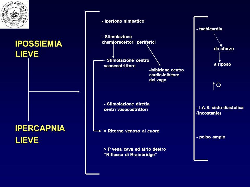 IPOSSIEMIA LIEVE IPERCAPNIALIEVE - Ipertono simpatico - Stimolazione chemiorecettori periferici - Stimolazione centro vasocostrittore - Stimolazione d