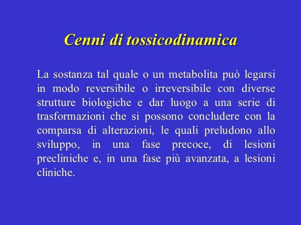 Cenni di tossicodinamica La sostanza tal quale o un metabolita può legarsi in modo reversibile o irreversibile con diverse strutture biologiche e dar