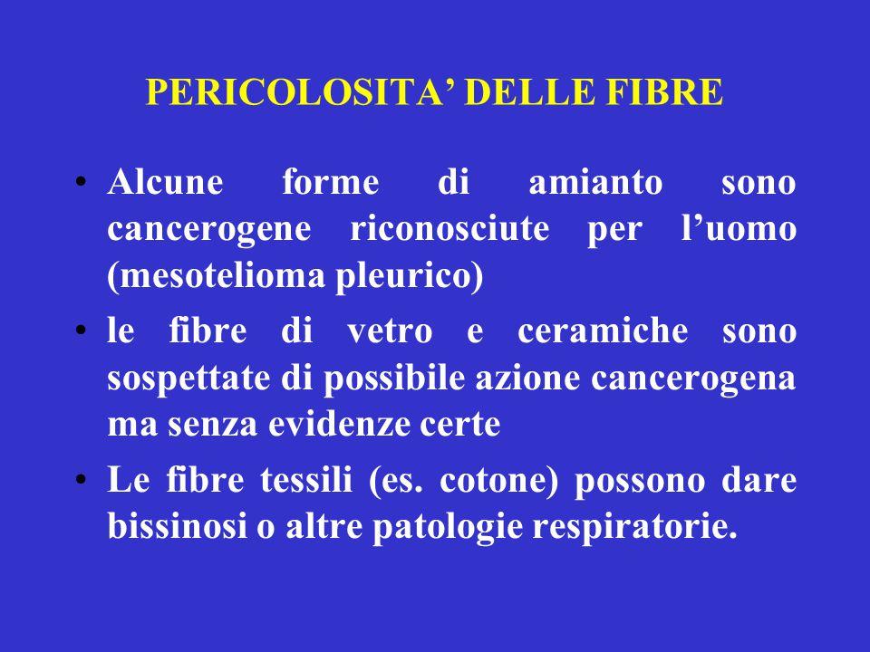 PERICOLOSITA' DELLE FIBRE Alcune forme di amianto sono cancerogene riconosciute per l'uomo (mesotelioma pleurico) le fibre di vetro e ceramiche sono s
