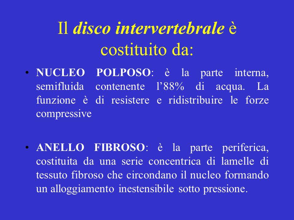 Il disco intervertebrale è costituito da: NUCLEO POLPOSO: è la parte interna, semifluida contenente l'88% di acqua. La funzione è di resistere e ridis