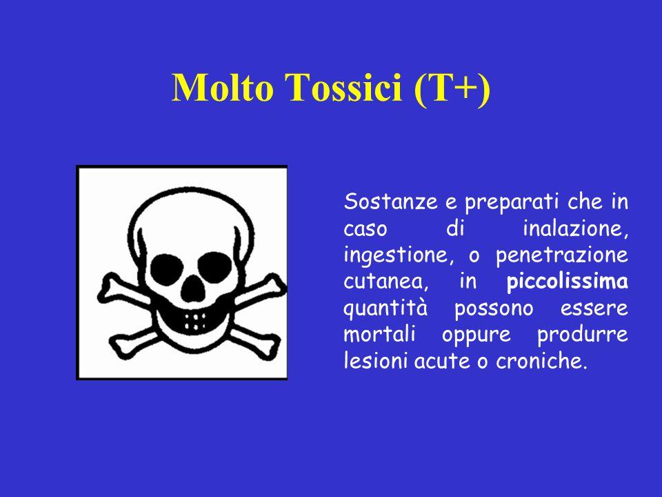 Molto Tossici (T+) Sostanze e preparati che in caso di inalazione, ingestione, o penetrazione cutanea, in piccolissima quantità possono essere mortali