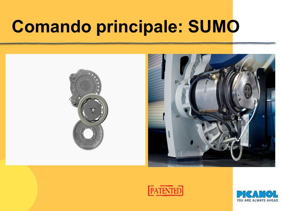 Dispositivi comuni alle due macchine Comando principale: SUMO Raffreddamento ad acqua Quick Style Change Display di comando e di controllo
