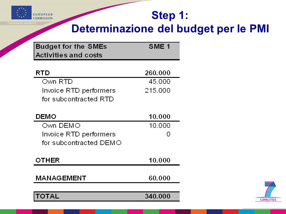 Step 1: Determinazione del budget per le PMI