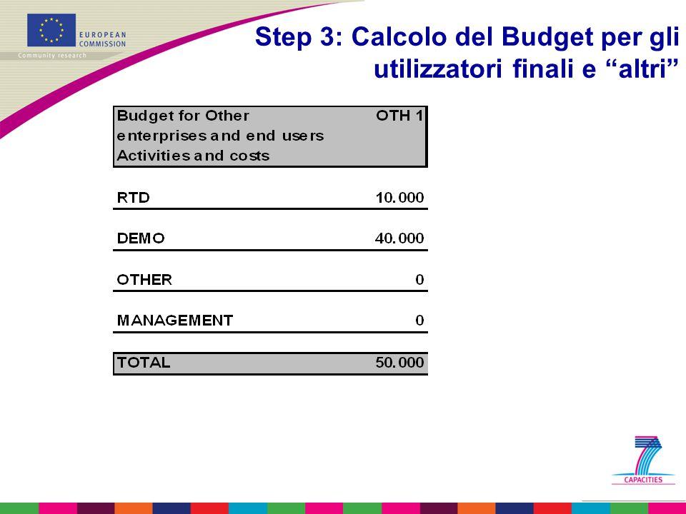Step 3: Calcolo del Budget per gli utilizzatori finali e altri