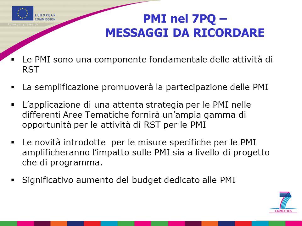 PMI nel 7PQ – MESSAGGI DA RICORDARE  Le PMI sono una componente fondamentale delle attività di RST  La semplificazione promuoverà la partecipazione delle PMI  L'applicazione di una attenta strategia per le PMI nelle differenti Aree Tematiche fornirà un'ampia gamma di opportunità per le attività di RST per le PMI  Le novità introdotte per le misure specifiche per le PMI amplificheranno l'impatto sulle PMI sia a livello di progetto che di programma.