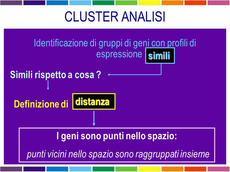 CLUSTER ANALISI Identificazione di gruppi di geni con profili di espressione simili Simili rispetto a cosa ? Definizione di distanza I geni sono punti