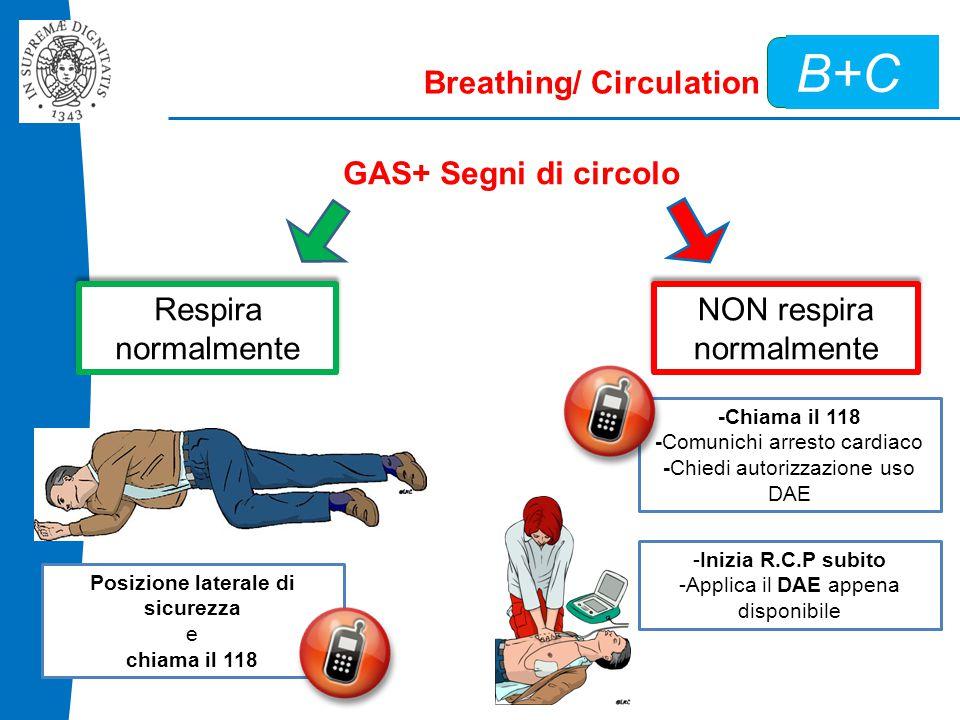 B+C Breathing/ Circulation GAS+ Segni di circolo Respira normalmente Posizione laterale di sicurezza e chiama il 118 NON respira normalmente -Chiama il 118 -Comunichi arresto cardiaco -Chiedi autorizzazione uso DAE -Inizia R.C.P subito -Applica il DAE appena disponibile