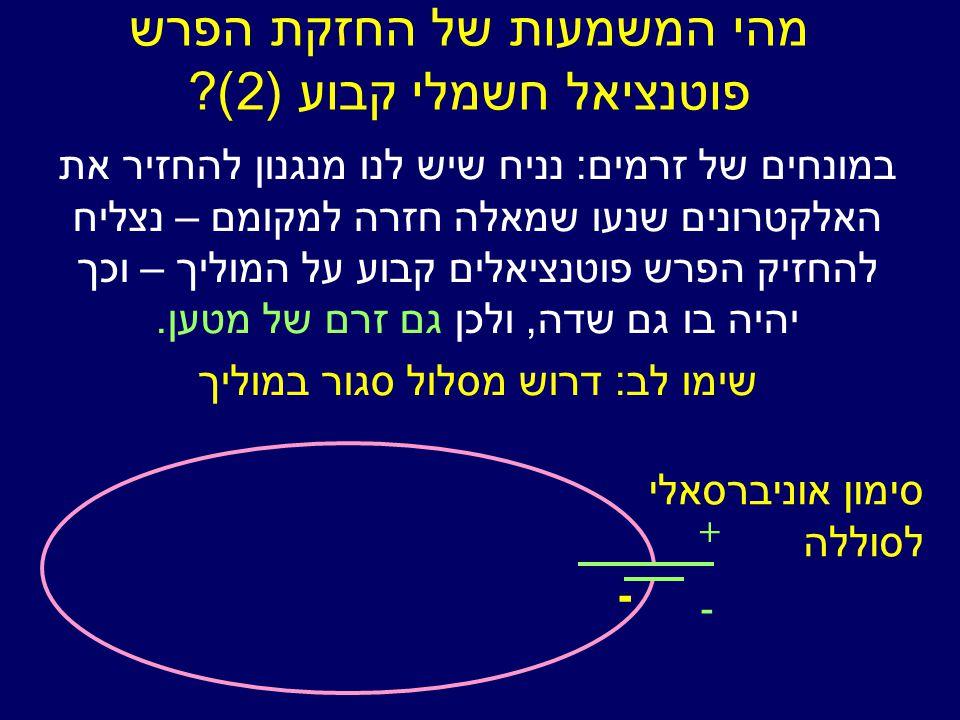 מהי המשמעות של החזקת הפרש פוטנציאל חשמלי קבוע (2).