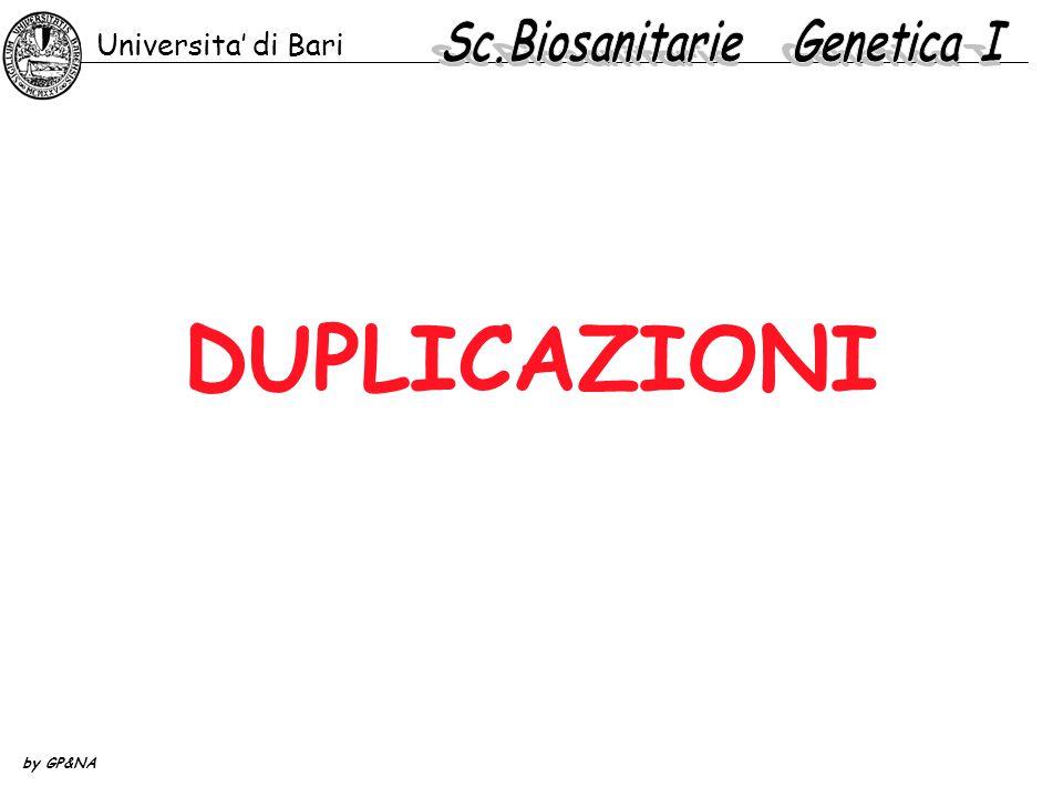 DUPLICAZIONI Universita' di Bari by GP&NA