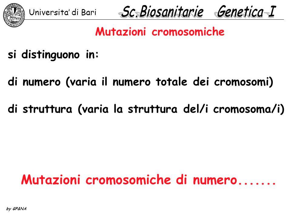 Mutazioni cromosomiche si distinguono in: di numero (varia il numero totale dei cromosomi) di struttura (varia la struttura del/i cromosoma/i) Mutazio