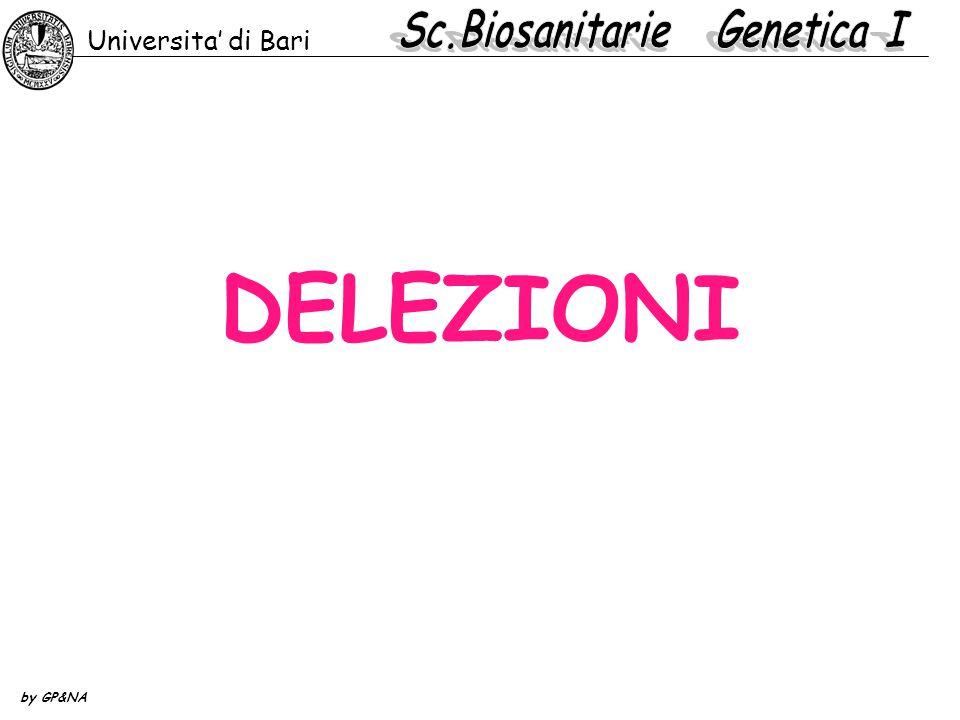 DELEZIONI Universita' di Bari by GP&NA