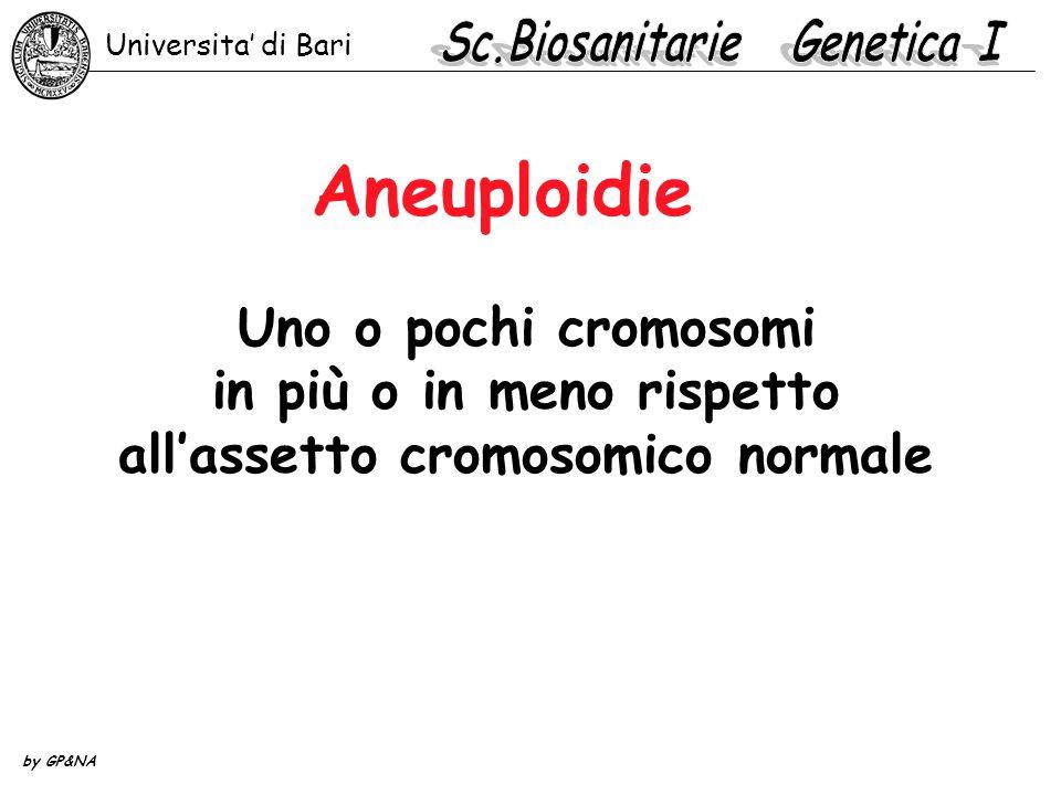 Aneuploidie Uno o pochi cromosomi in più o in meno rispetto all'assetto cromosomico normale Universita' di Bari by GP&NA
