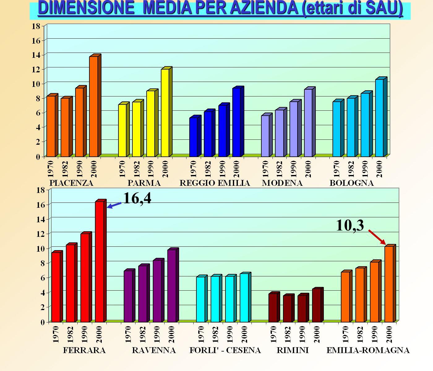 DIMENSIONE MEDIA PER AZIENDA (ettari di SAU) 16,4 10,3