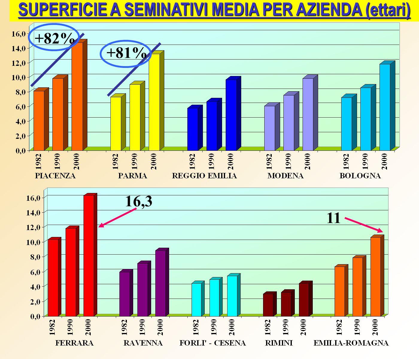 SUPERFICIE A SEMINATIVI MEDIA PER AZIENDA (ettari) +82% +81% 16,3 11