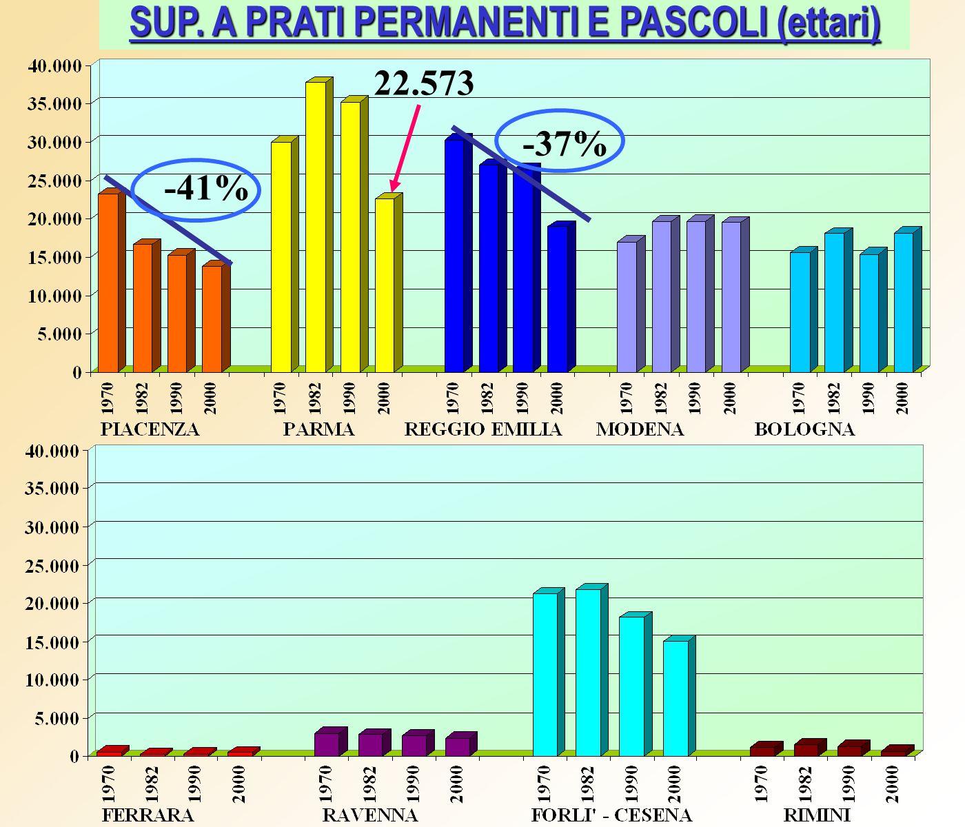 SUP. A PRATI PERMANENTI E PASCOLI (ettari) 22.573 -37% -41%
