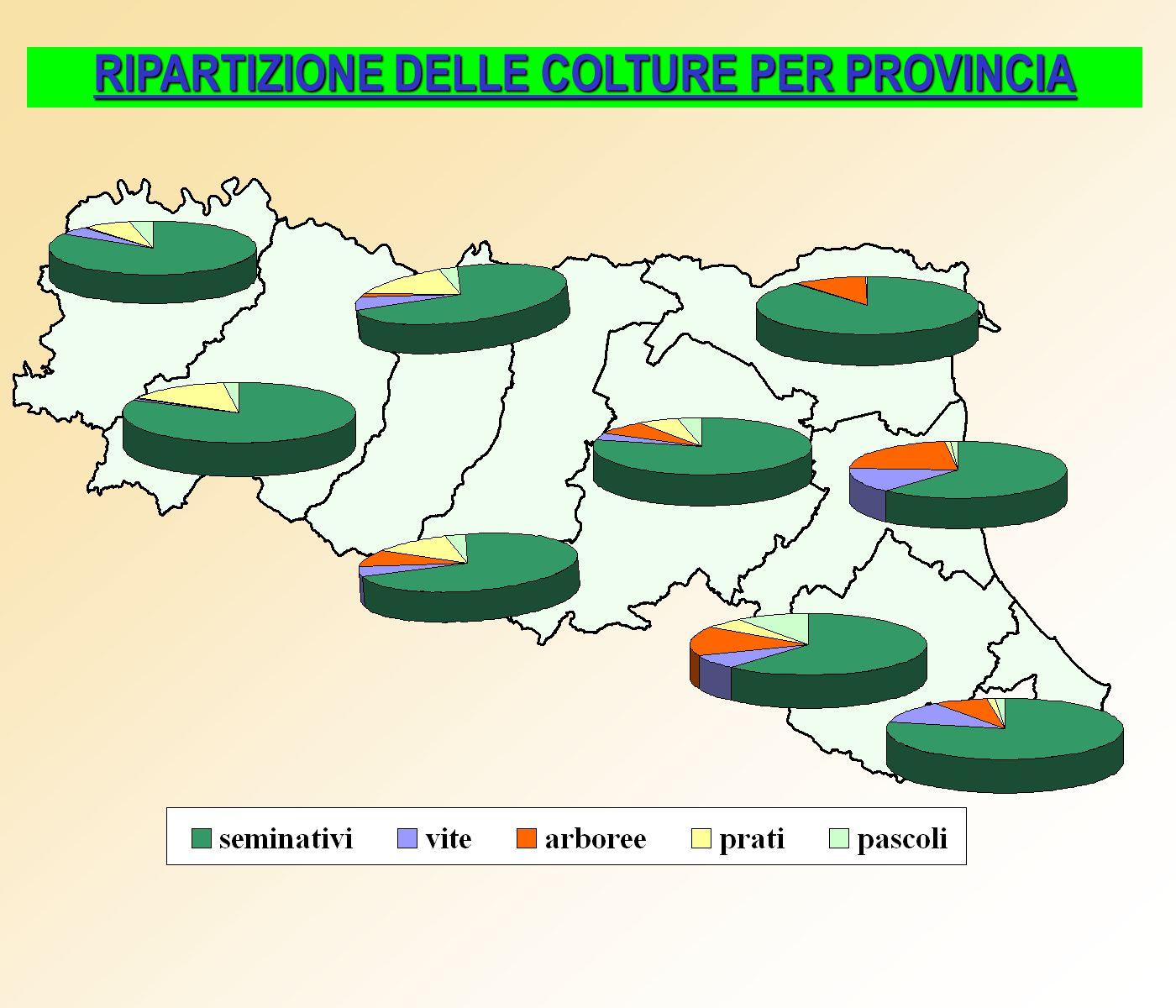 RIPARTIZIONE DELLE COLTURE PER PROVINCIA