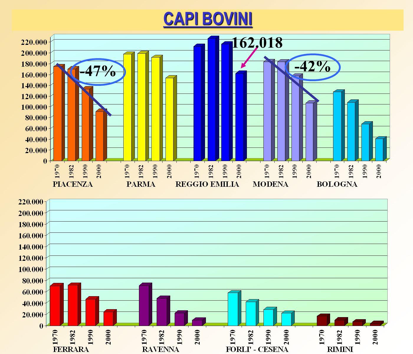 CAPI BOVINI 162.018 -47% -42%