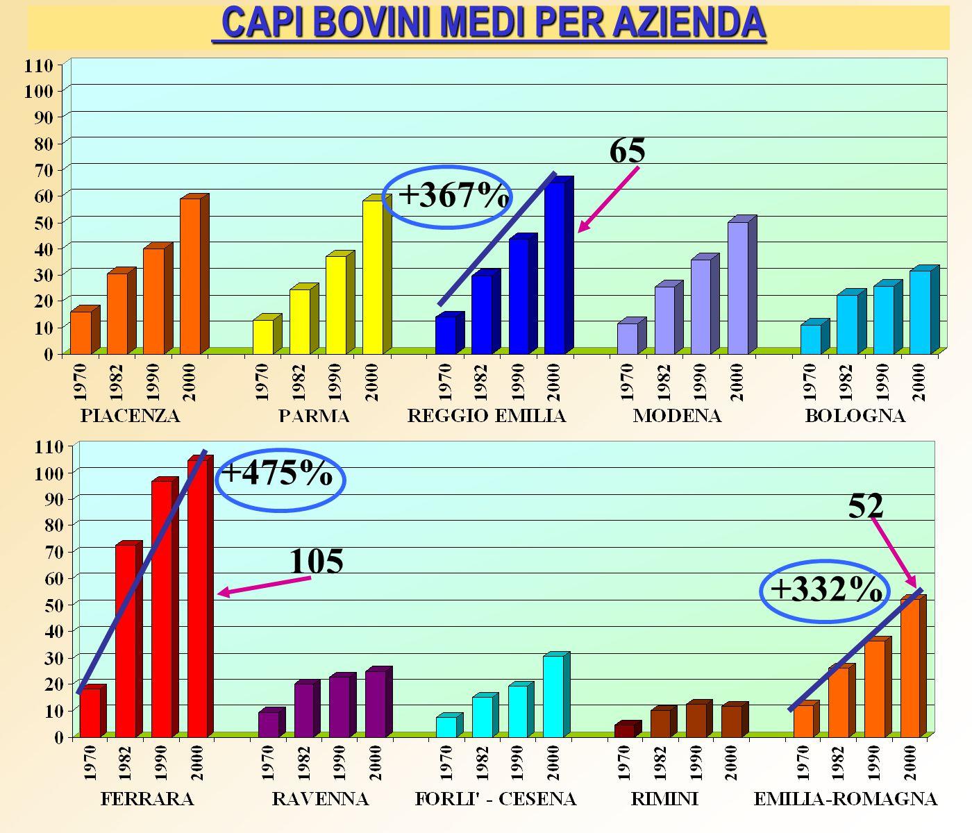 CAPI BOVINI MEDI PER AZIENDA CAPI BOVINI MEDI PER AZIENDA +367% +475% +332% 65 105 52