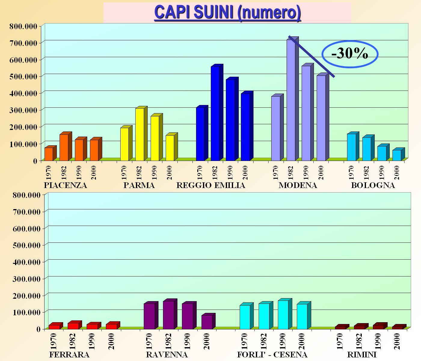CAPI SUINI (numero) -30%