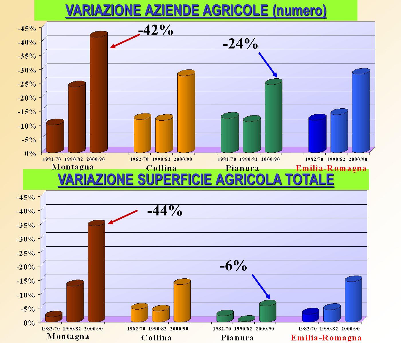 VARIAZIONE AZIENDE AGRICOLE CON SEMINATIVI VARIAZIONE SUPERFICIE A SEMINATIVI -48% -25,5% -35% -0,5% -7,5% -31%