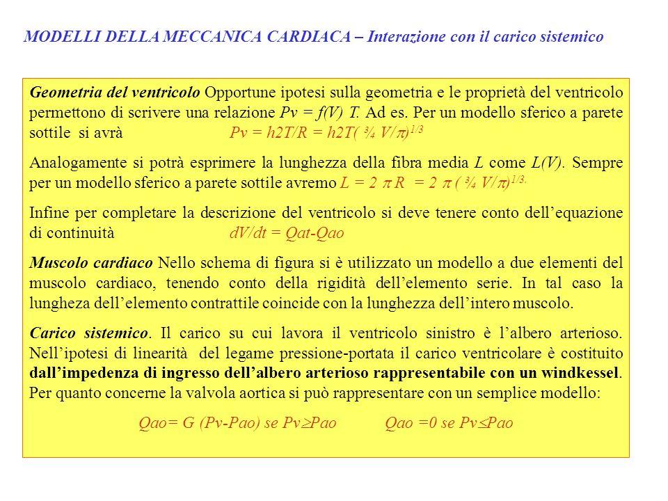 MODELLI DELLA MECCANICA CARDIACA – Interazione con il carico sistemico Geometria del ventricolo Opportune ipotesi sulla geometria e le proprietà del ventricolo permettono di scrivere una relazione Pv = f(V) T.