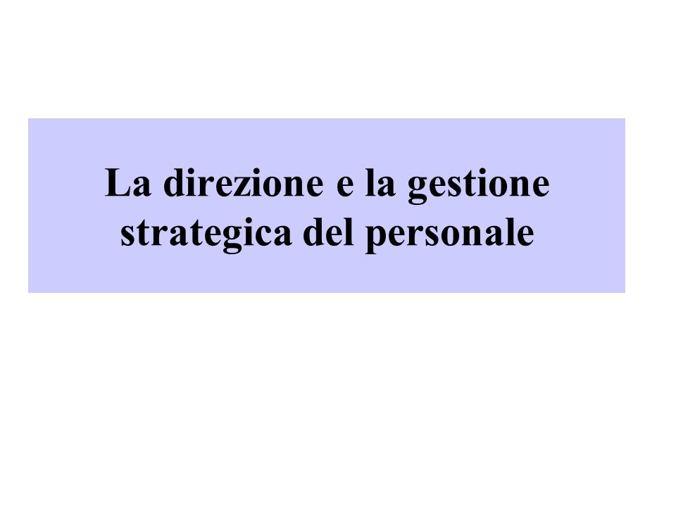 12 Il modello di Ulrich ProcessiPersone Focus strategico Orientamento lungo periodo Focus operativo Orientamento breve periodo Business partner Agente di cambiamento Gestore Employee champion