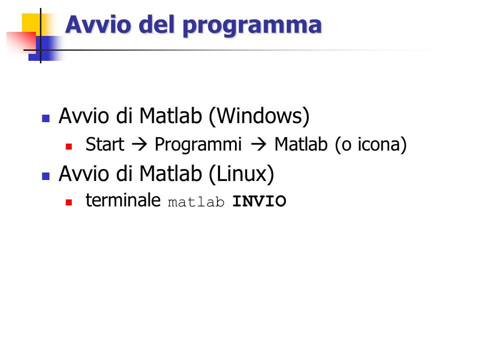 Avvio del programma Avvio di Matlab (Windows) Start  Programmi  Matlab (o icona) Avvio di Matlab (Linux) terminale matlab INVIO