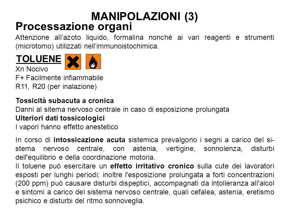 TOLUENE Xn Nocivo F+ Facilmente infiammabile R11, R20 (per inalazione) Tossicità subacuta a cronica Danni al sitema nervoso centrale in caso di esposi