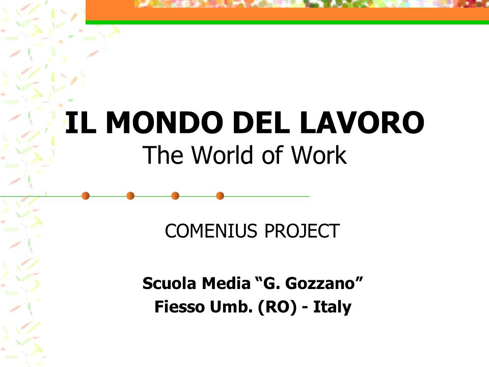 IL MONDO DEL LAVORO The World of Work COMENIUS PROJECT Scuola Media G.