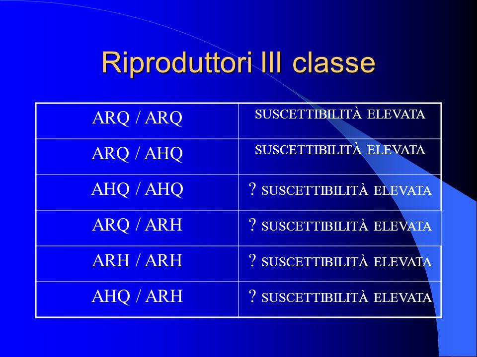 Riproduttori III classe ARQ / ARQ SUSCETTIBILITÀ ELEVATA ARQ / AHQ SUSCETTIBILITÀ ELEVATA AHQ / AHQ.
