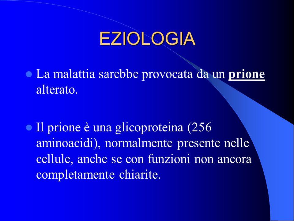EZIOLOGIA La malattia sarebbe provocata da un prione alterato.