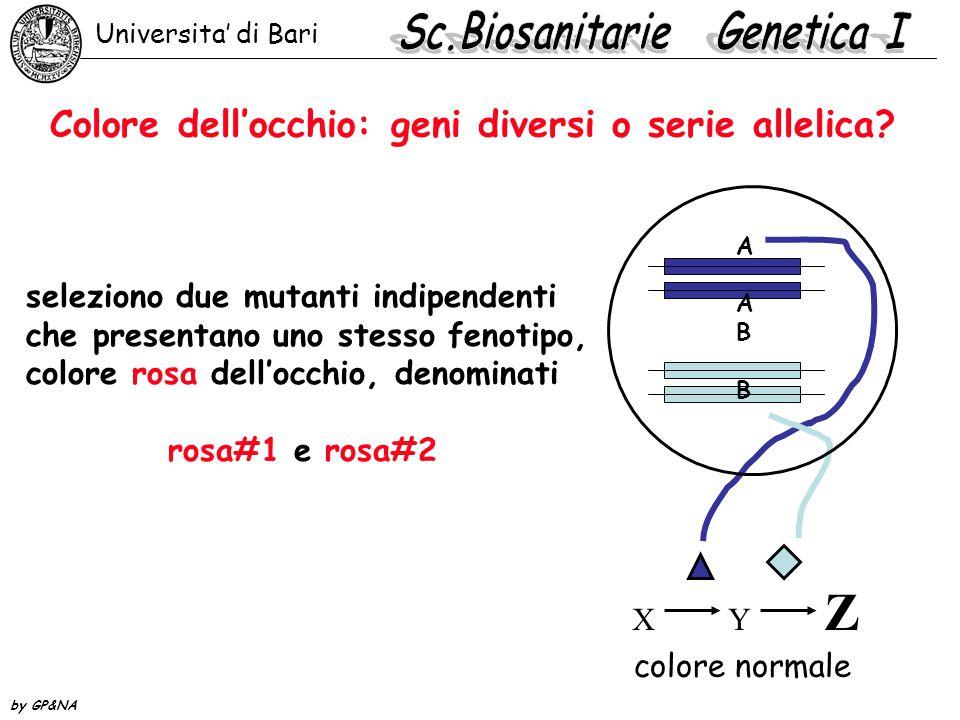Colore dell'occhio: geni diversi o serie allelica.