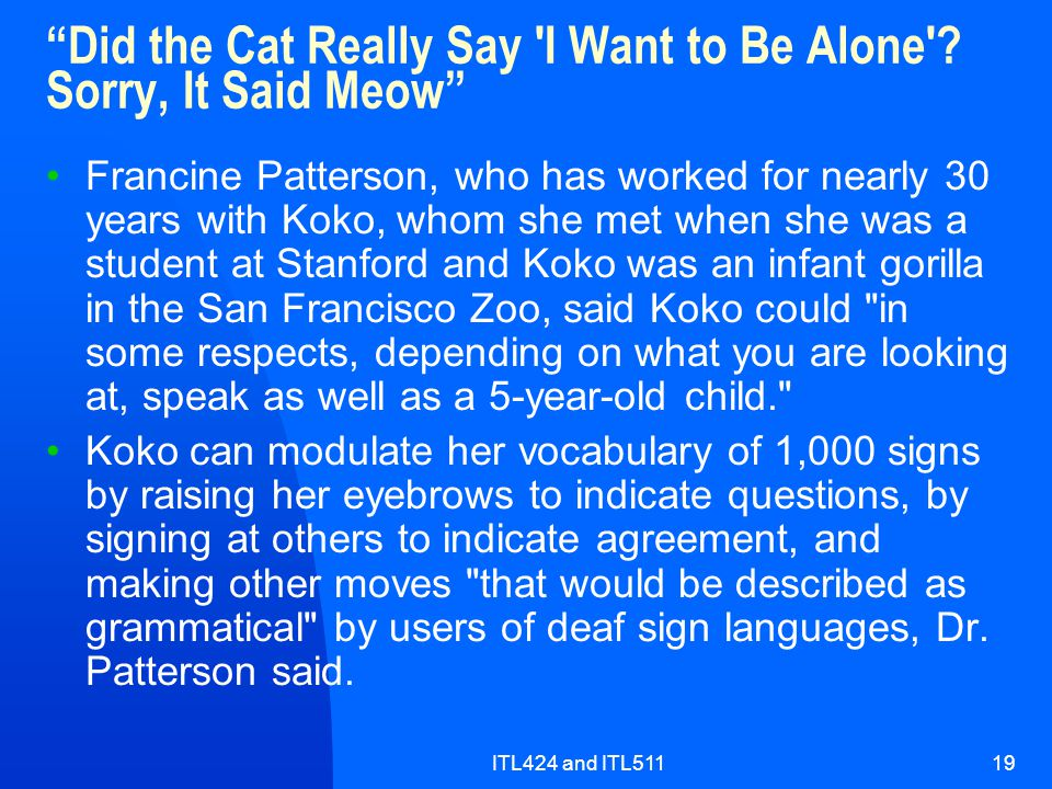 ITL424 and ITL51119 Did the Cat Really Say I Want to Be Alone .