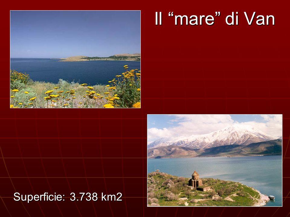 """Il """"mare"""" di Van Superficie: 3.738 km2"""