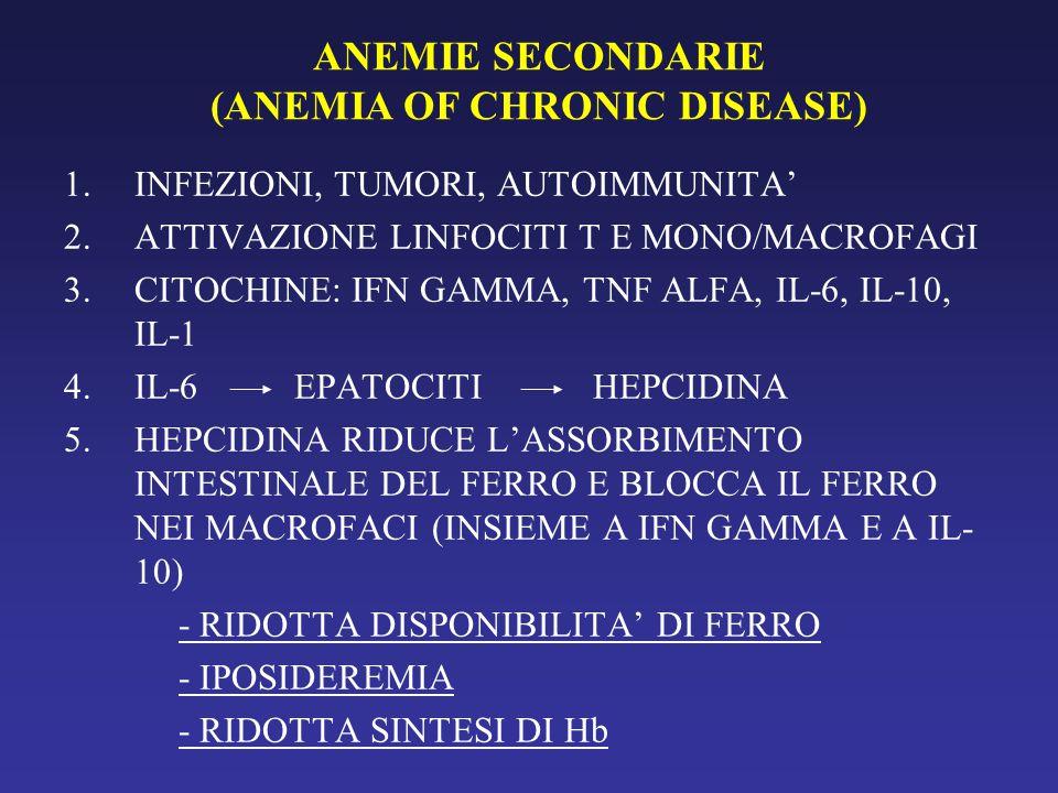 ANEMIE SECONDARIE (ANEMIA OF CHRONIC DISEASE) 1.INFEZIONI, TUMORI, AUTOIMMUNITA' 2.ATTIVAZIONE LINFOCITI T E MONO/MACROFAGI 3.CITOCHINE: IFN GAMMA, TNF ALFA, IL-6, IL-10, IL-1 4.IL-6 EPATOCITIHEPCIDINA 5.HEPCIDINA RIDUCE L'ASSORBIMENTO INTESTINALE DEL FERRO E BLOCCA IL FERRO NEI MACROFACI (INSIEME A IFN GAMMA E A IL- 10) - RIDOTTA DISPONIBILITA' DI FERRO - IPOSIDEREMIA - RIDOTTA SINTESI DI Hb