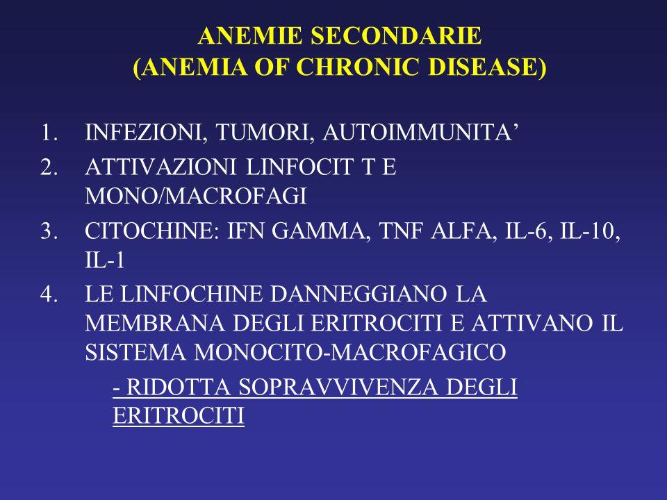 ANEMIE SECONDARIE (ANEMIA OF CHRONIC DISEASE) 1.INFEZIONI, TUMORI, AUTOIMMUNITA' 2.ATTIVAZIONI LINFOCIT T E MONO/MACROFAGI 3.CITOCHINE: IFN GAMMA, TNF ALFA, IL-6, IL-10, IL-1 4.LE LINFOCHINE DANNEGGIANO LA MEMBRANA DEGLI ERITROCITI E ATTIVANO IL SISTEMA MONOCITO-MACROFAGICO - RIDOTTA SOPRAVVIVENZA DEGLI ERITROCITI