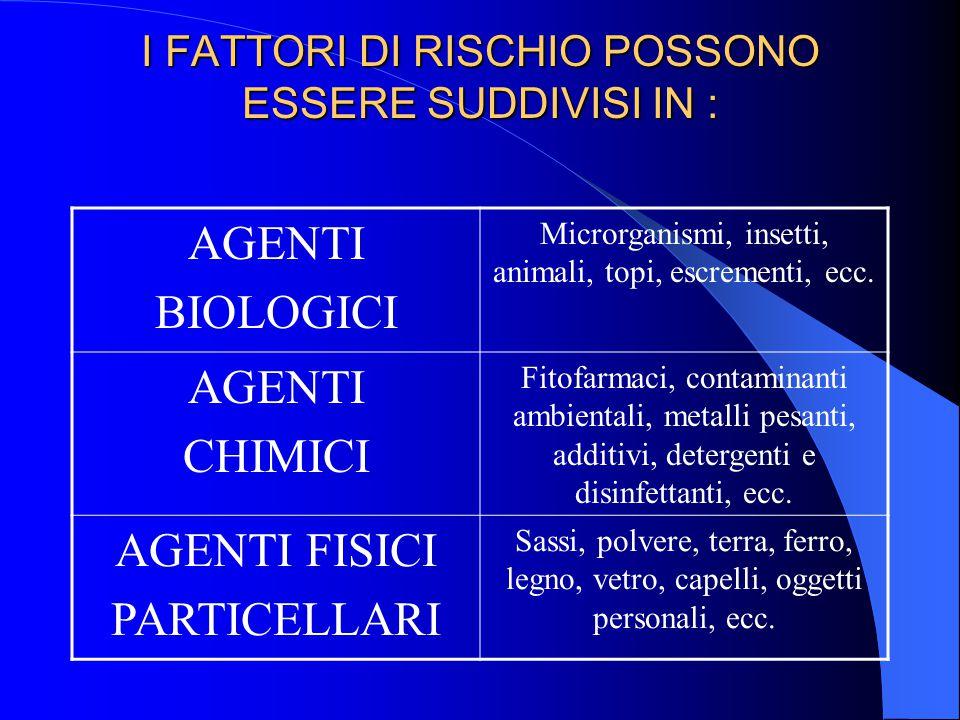 I FATTORI DI RISCHIO POSSONO ESSERE SUDDIVISI IN : AGENTI BIOLOGICI Microrganismi, insetti, animali, topi, escrementi, ecc. AGENTI CHIMICI Fitofarmaci