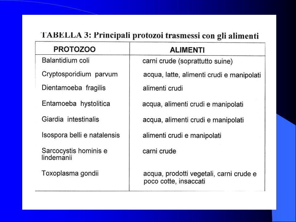 Le più importanti sono: Aflatossine Bl B2 GI G2 prodotti agricoli, foraggi, burro di arachide (epatotossiche e cancerogene) Aflatossine Ml e M2 latte, derivati, urine (in quanto metaboliti) Ocratossina A prodotti agricoli, foraggi, carni, latte e derivati (danni renali e teratogeni) Tricoteceni Zearalenone Fumonisine Deossivalenolo (DON) prodotti agricoli, foraggi (vulvovaginiti ed effetti estrogeni) Patulina e Citrina mele, succhi e nettari di mela (necrotossiche )