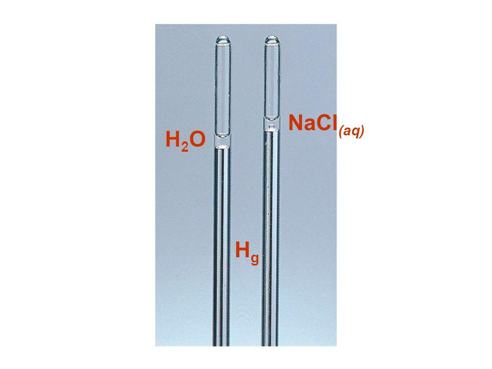 H2OH2OH2OH2O NaCl (aq) HgHg