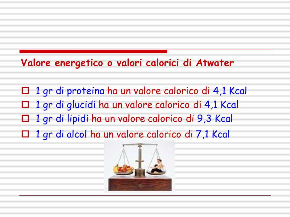 Valore energetico o valori calorici di Atwater  1 gr di proteina ha un valore calorico di 4,1 Kcal  1 gr di glucidi ha un valore calorico di 4,1 Kca