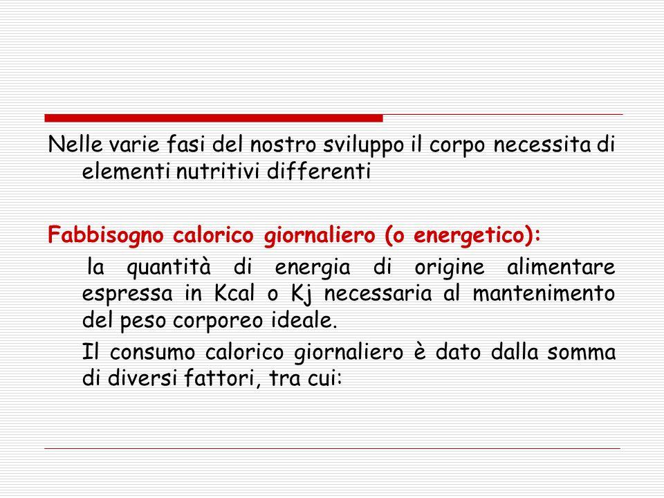 Nelle varie fasi del nostro sviluppo il corpo necessita di elementi nutritivi differenti Fabbisogno calorico giornaliero (o energetico): la quantità d