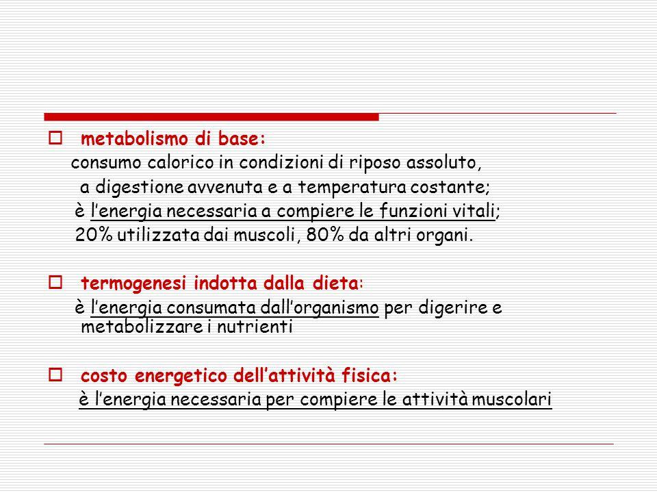  metabolismo di base: consumo calorico in condizioni di riposo assoluto, a digestione avvenuta e a temperatura costante; è l'energia necessaria a com