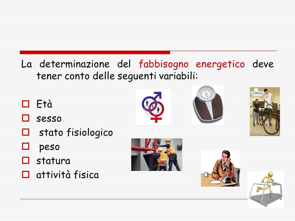 La determinazione del fabbisogno energetico deve tener conto delle seguenti variabili:  Età  sesso  stato fisiologico  peso  statura  attività f