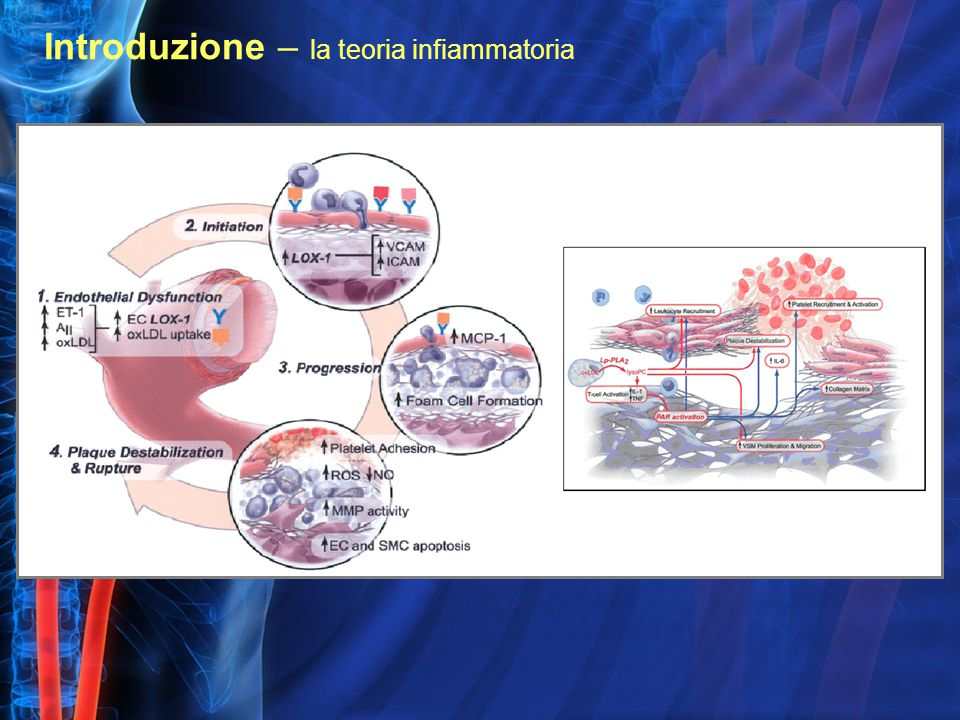 Introduzione – la teoria infiammatoria